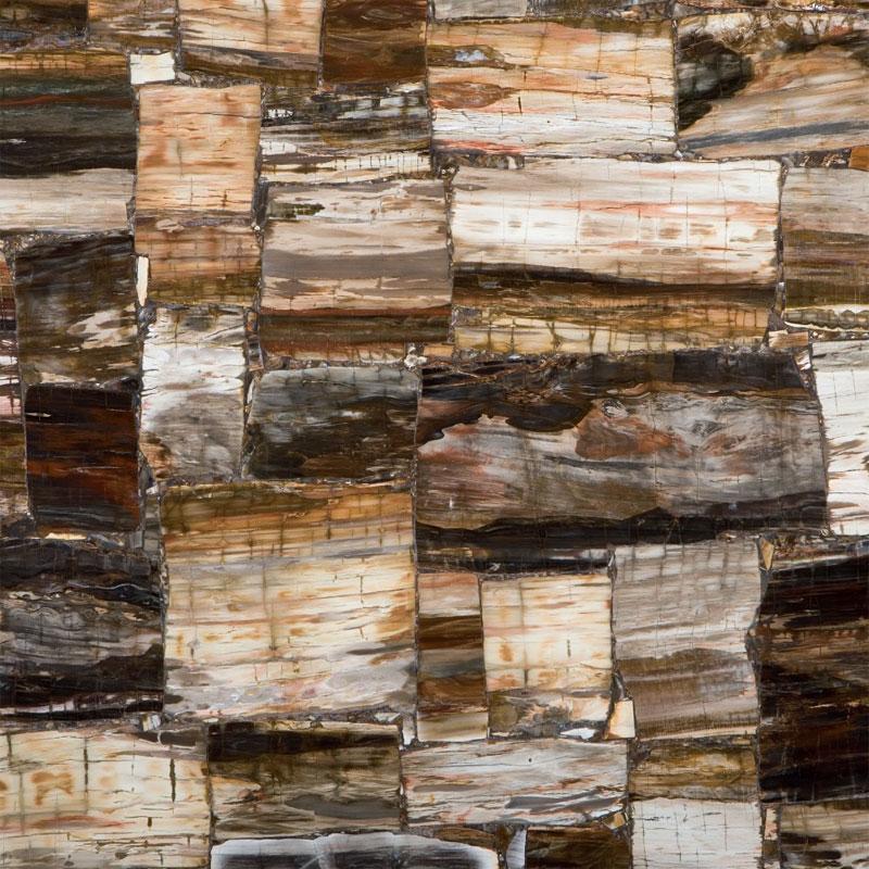 Caesarstone Petrified Wood Classic 8331